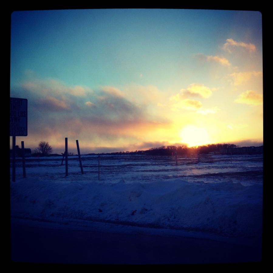 January Shine