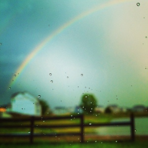 rainbow00