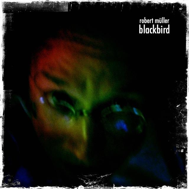 rm_blackbird